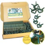 100 Stück stabile Pflanzenklammern für kleine & große Triebe - Rankhilfen - 100er-Set