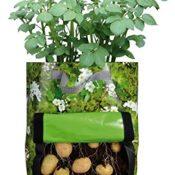 Pflanzbeutel von Fallen Fruits - konzipiert für Kartoffeln