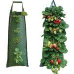 Pflanzsack der Firma Nutley - speziell für Erdbeeren konzipiert